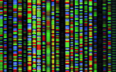DNA and the Future of Computing